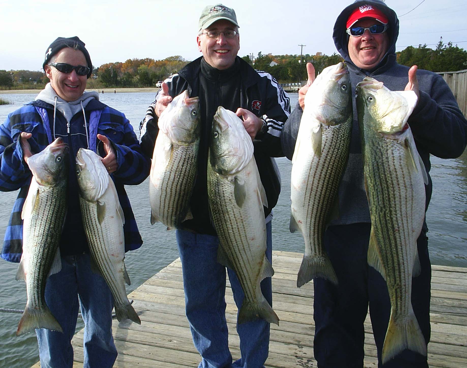 Brigantine striped bass catch